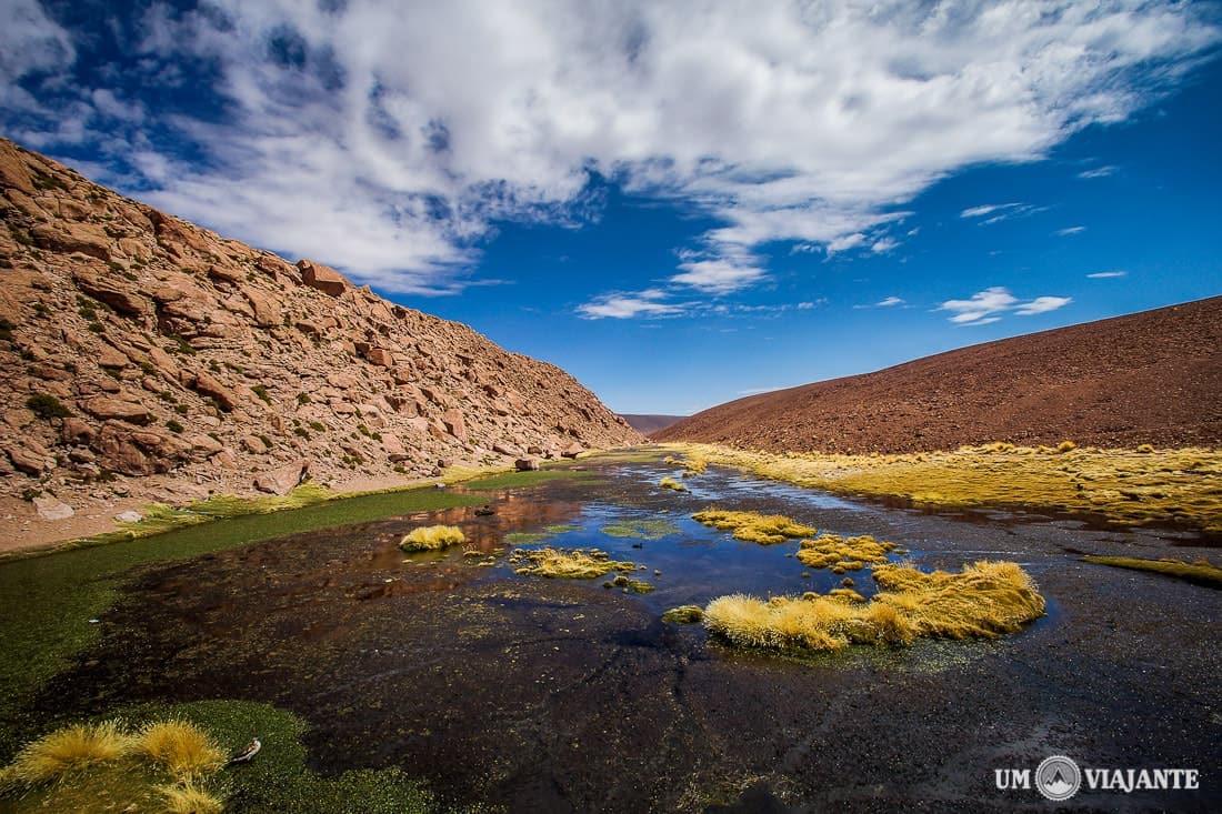 Atacama - El Tatio