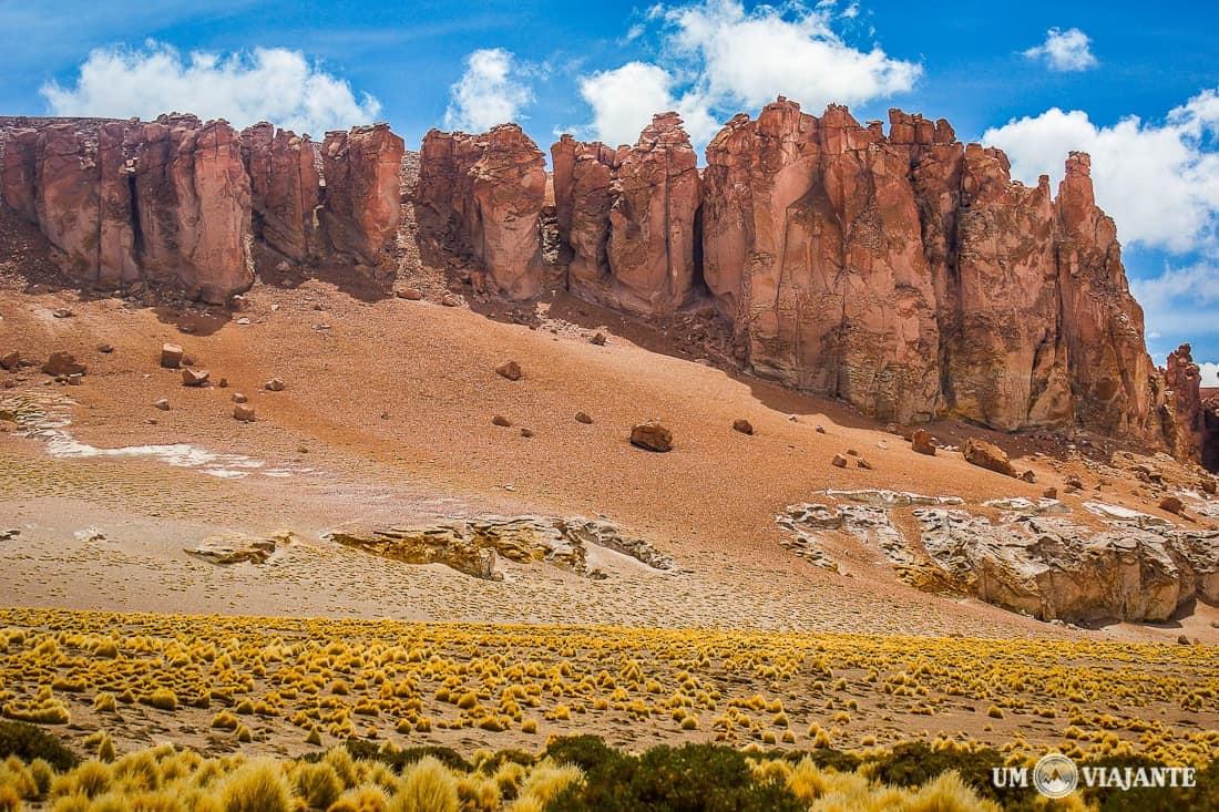 Salar de Tara, Atacama - Chile
