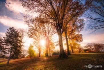 Fotos do Central Park no outono vão fazer você se apaixonar
