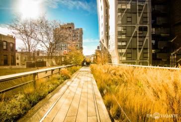 Um passeio pelo High Line de Nova York