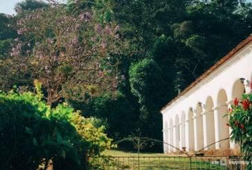Descubra a Rota Verde do Café, um passeio saindo de Fortaleza