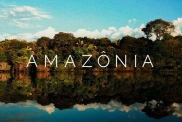 Descubra a Amazônia com Um Viajante