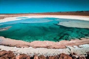 Lagunas Escondidas de Baltinache: um dos passeios mais lindos do Atacama