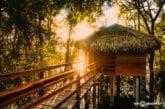 Juma Amazon Lodge: como é a estadia em um hotel de selva na Amazônia