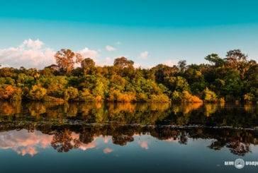 Roteiro Amazônia: minha primeira viagem para a Floresta Amazônica
