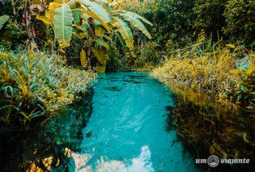 Vídeo Jalapão: Roteiro e dicas para uma viagem incrível ao Tocantins