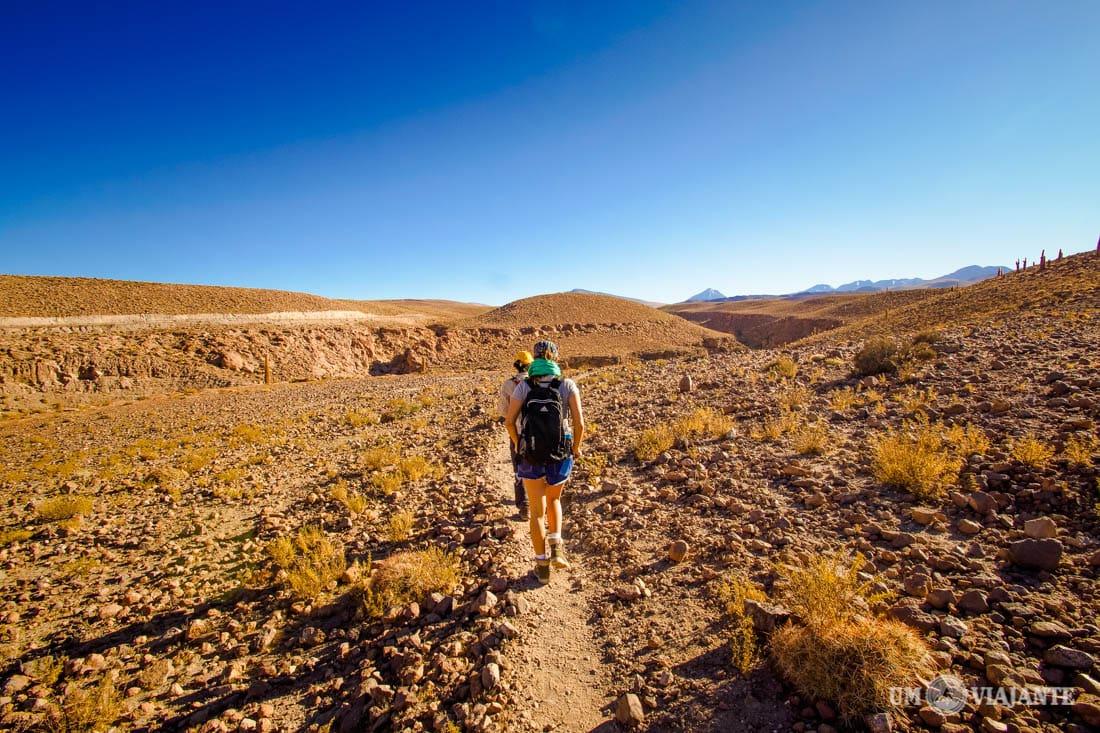 Trekking de Guatin, Deserto do Atacama