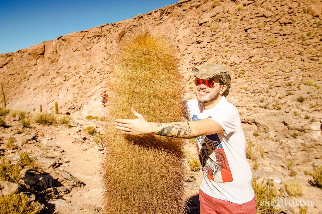 Trekking de Guatin, Deserto do Atacama - Chile