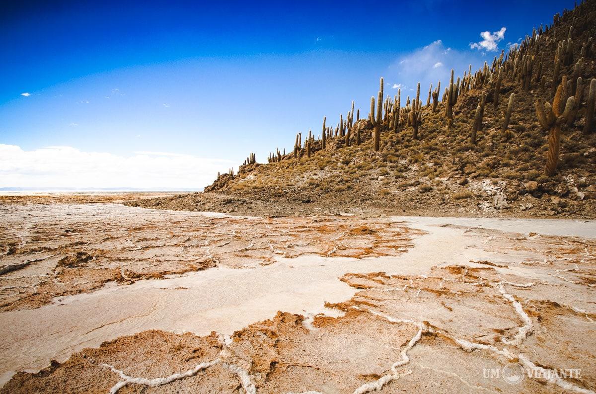Ilha de Cactos, Uyuni - Bolívia