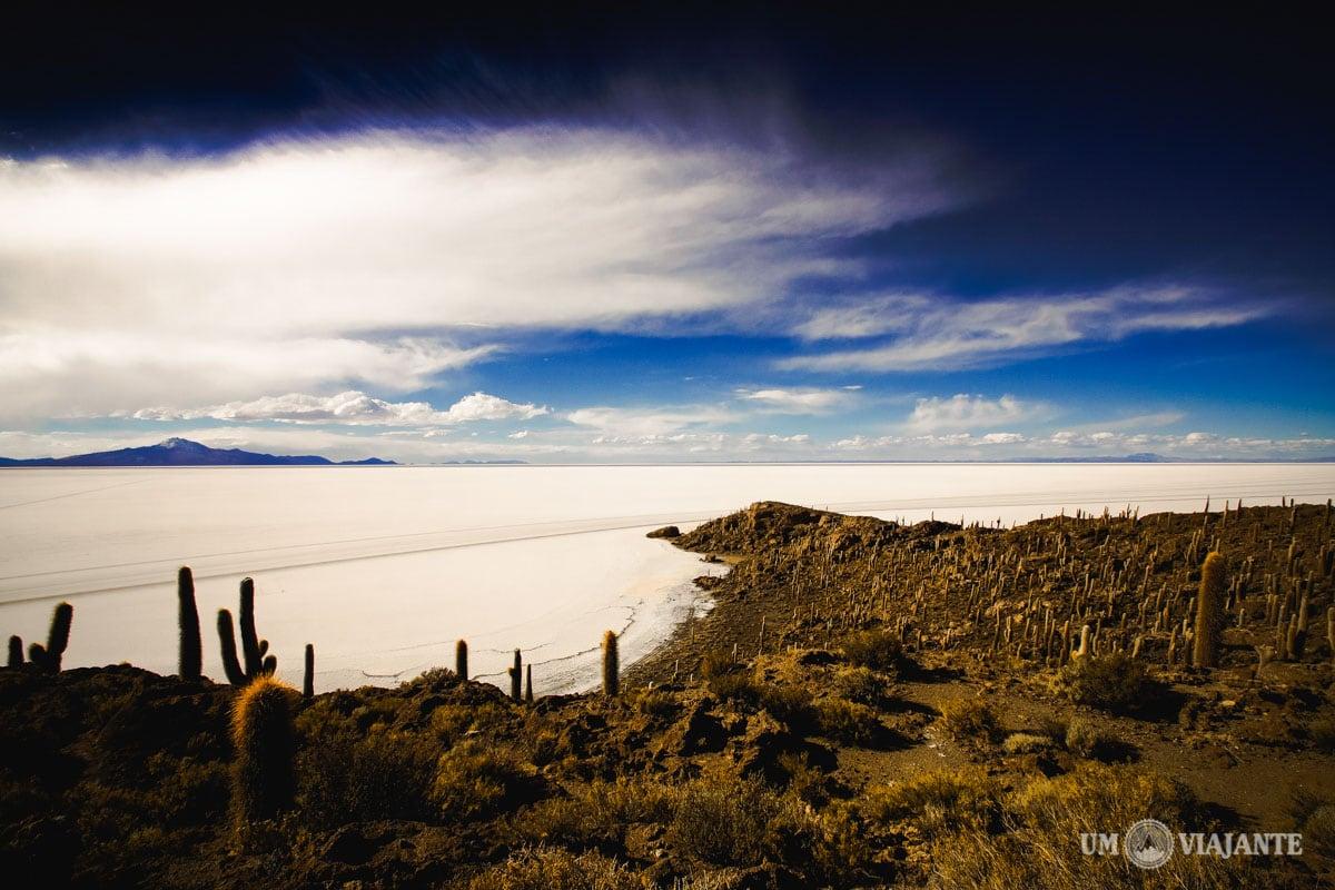 Ilha de Cactos do Salar de Uyuni, Bolívia