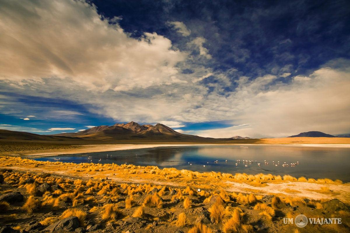 Laguna Cañapas, Bolívia