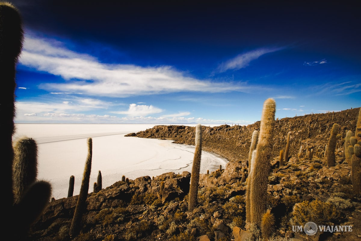 Ilha de Cactus, Salar de Uyuni - Bolívia