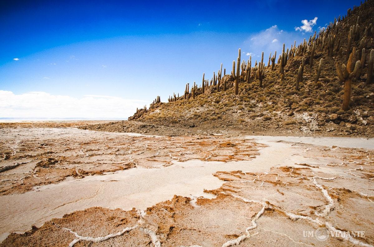 Ilha de Cactos, Salar de Uyuni - Bolívia