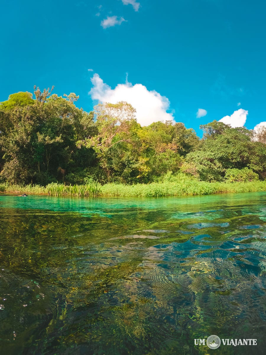Flutuação no Rio Sucuri, em Bonito