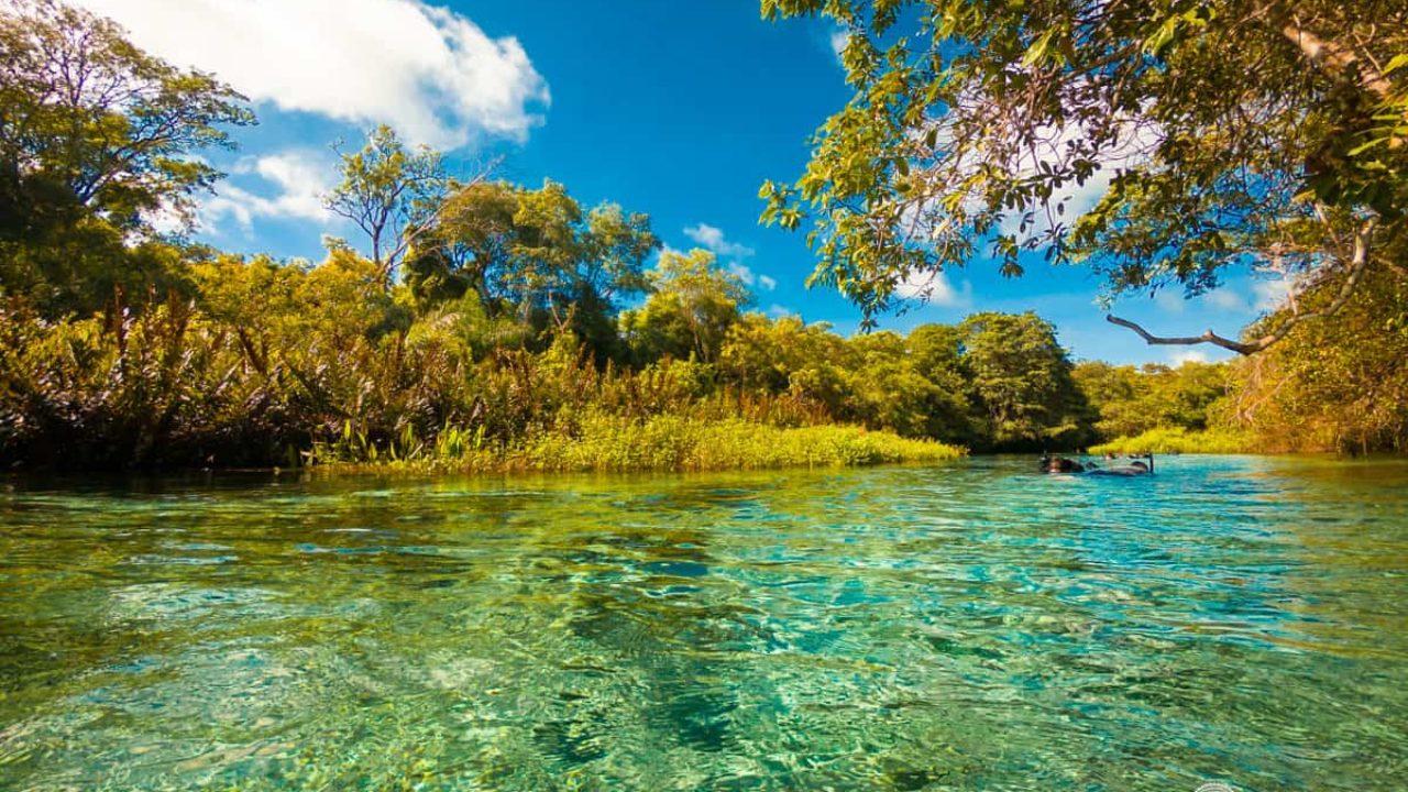 Como é a Flutuação no Rio Sucuri, em Bonito | Um Viajante