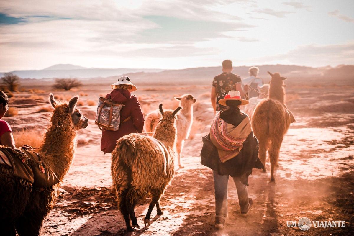 Caravana de Lhamas no Atacama