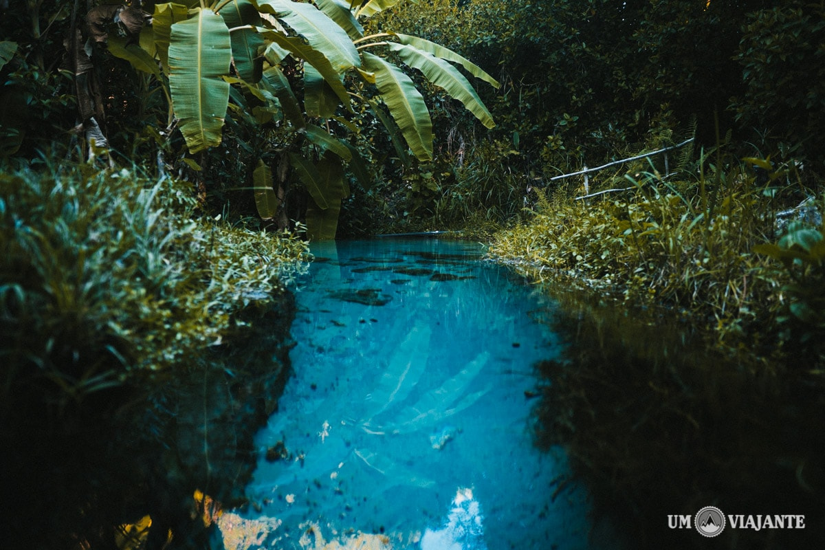 Fervedouro do Buritizinho - Jalapão