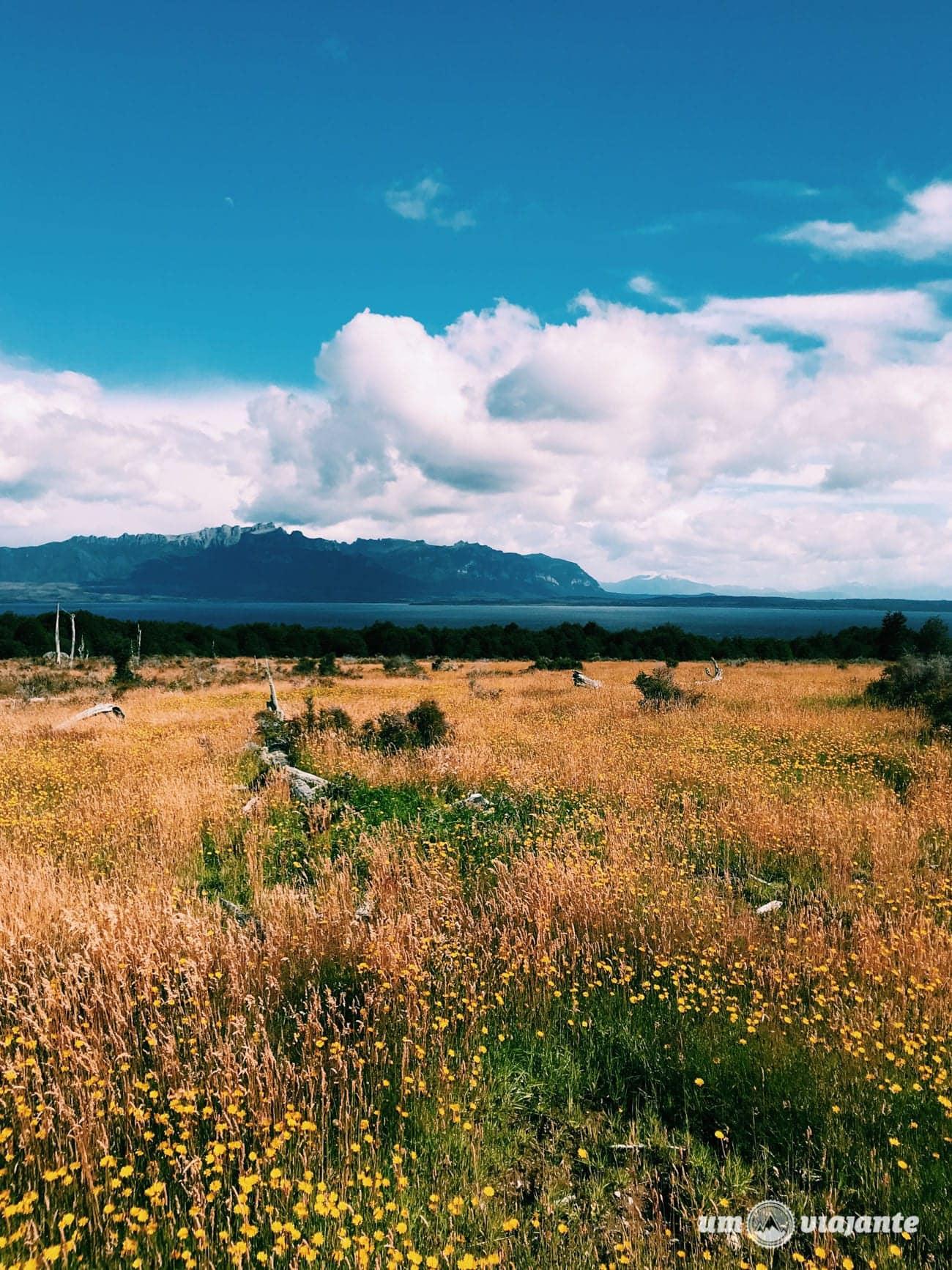 Estância, Patagônia Chilena