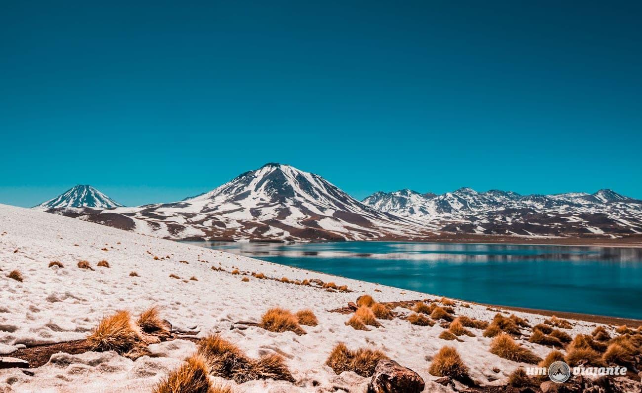 Lagunas Altiplânicas - Deserto do Atacama