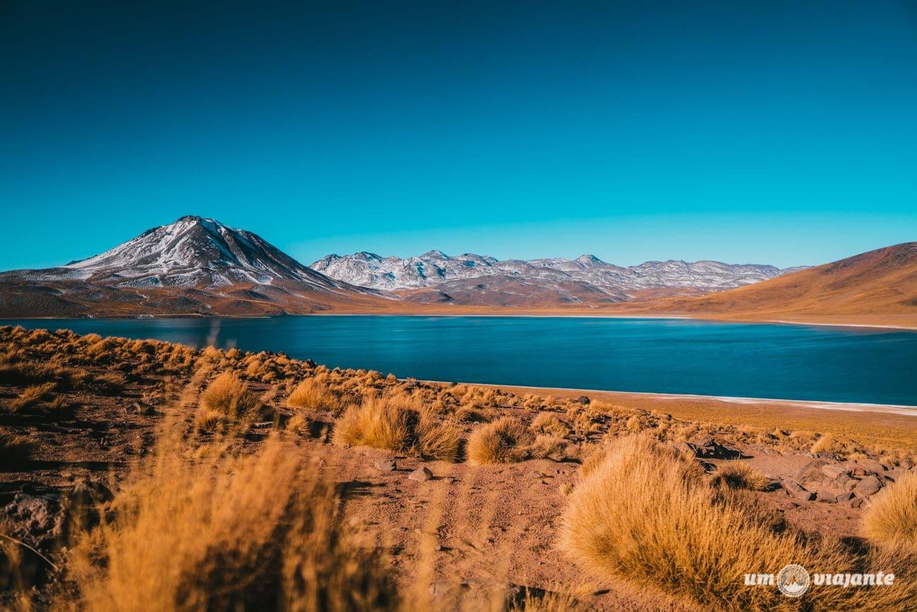 Laguna Miscanti - Altiplânicas do Atacama- Chile
