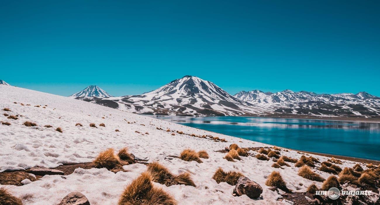 Laguna Miscanti - Inverno no Atacama, Chile
