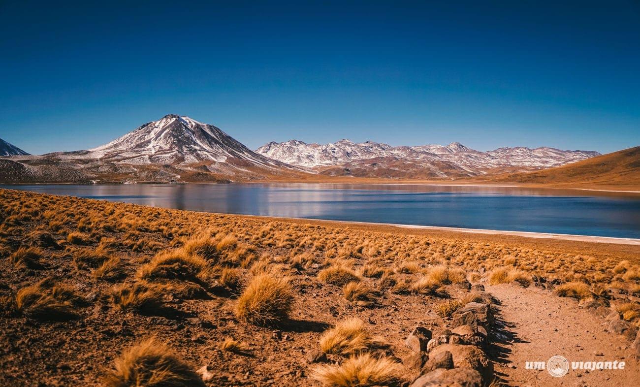 Lagunas Altiplânicas no Verão - Atacama