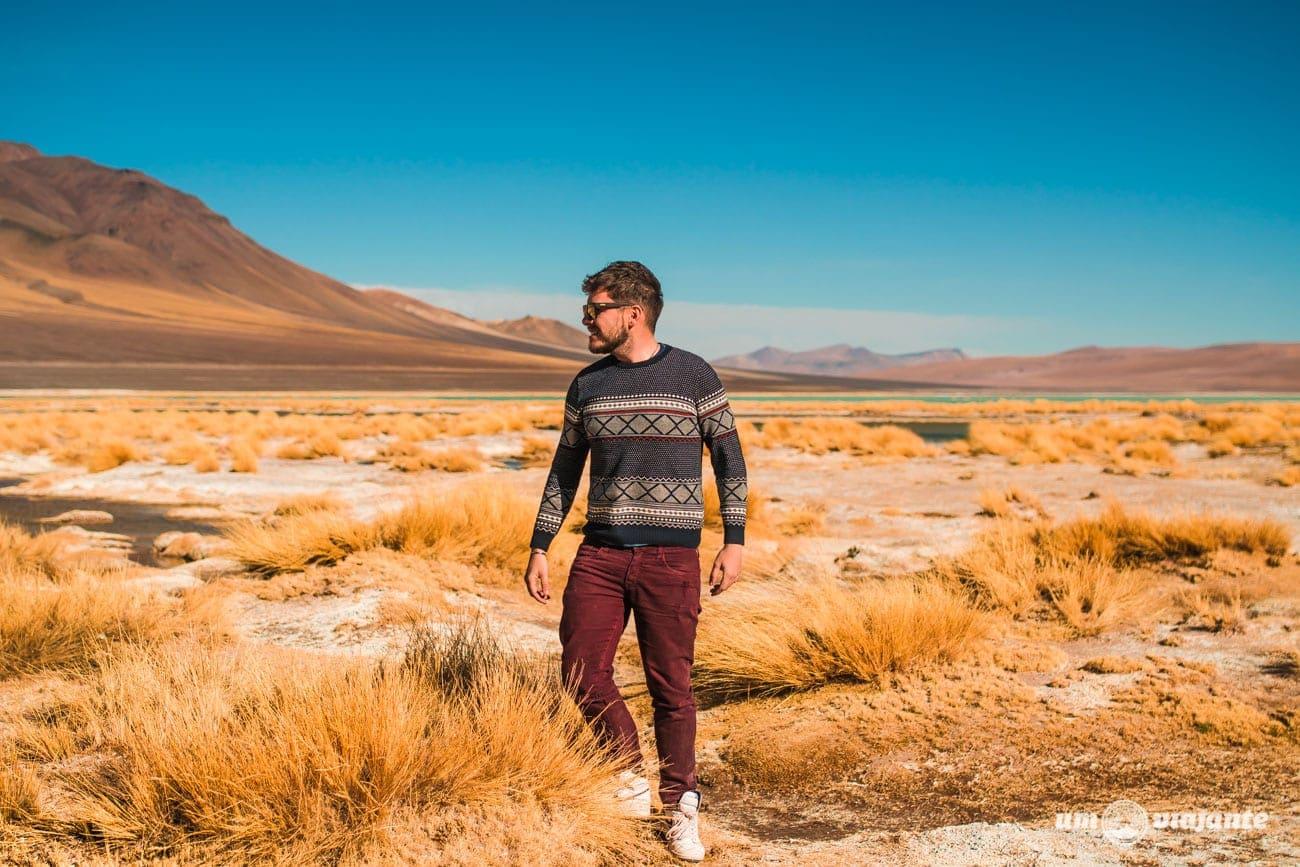 Lagunas Andinas - Salar de Tara - Deserto do Atacama, Chile