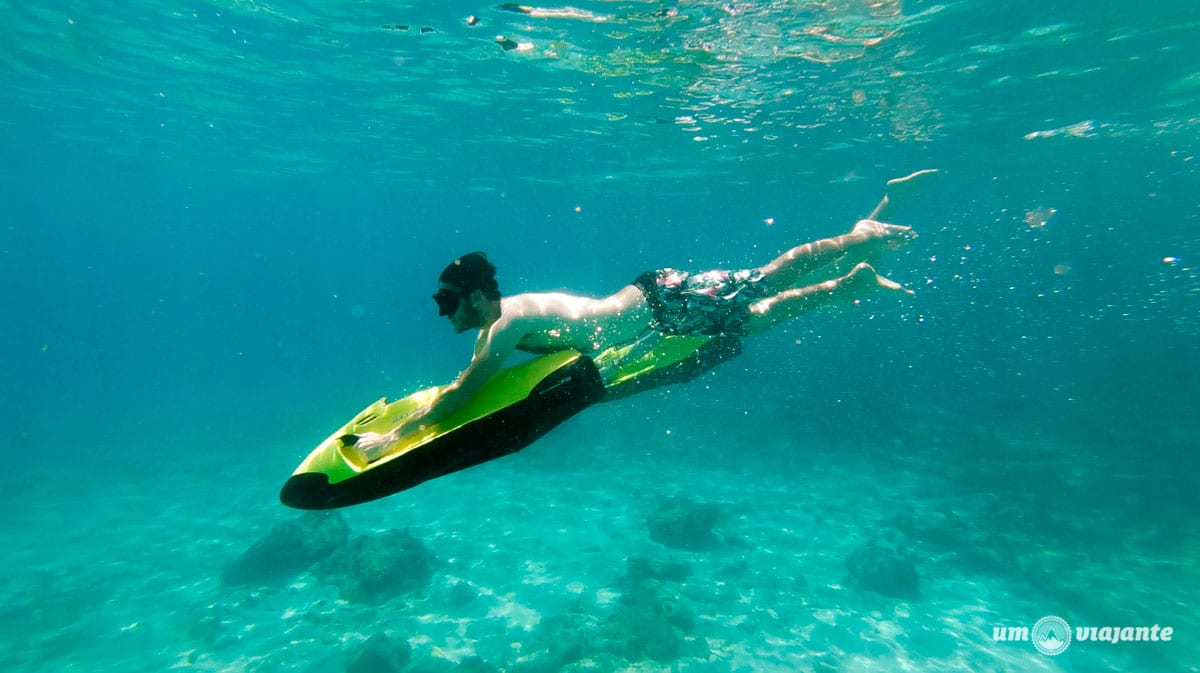 SeaBob Curaçao