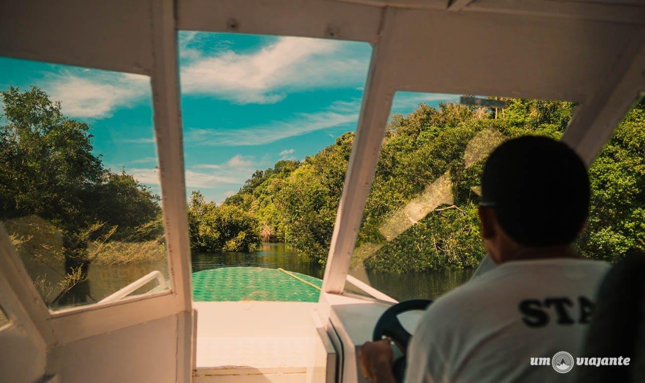 No caminho até o hotel Juma, Amazônia