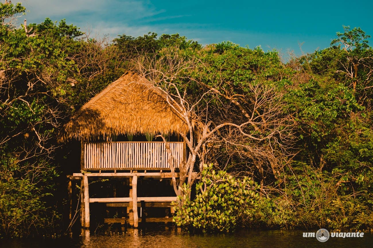 Bangalôs do Hotel Juma Amazon Lodge - Amazônia