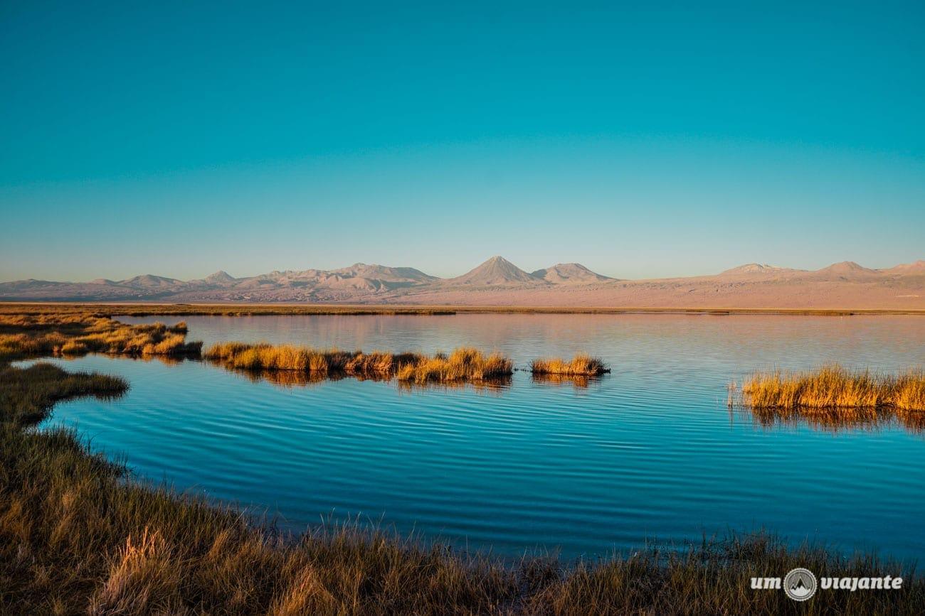Laguna Tebinquiche - Deserto do Atacama