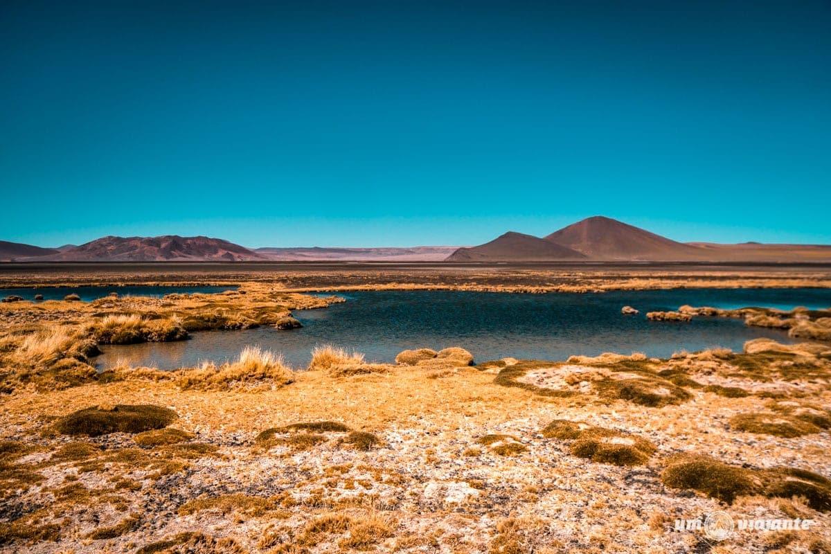Salar Escondido Atacama