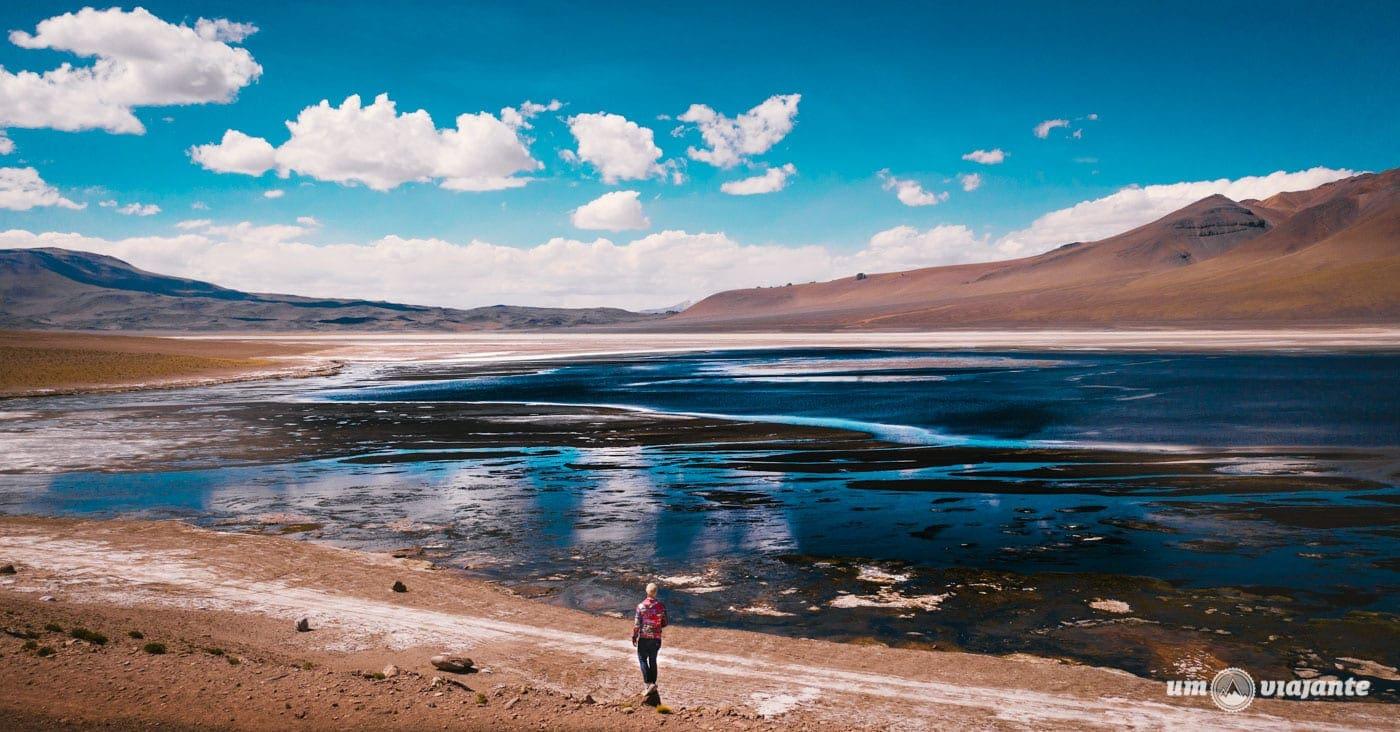 Lagunas Andinas - Passeio imperdível no Atacama