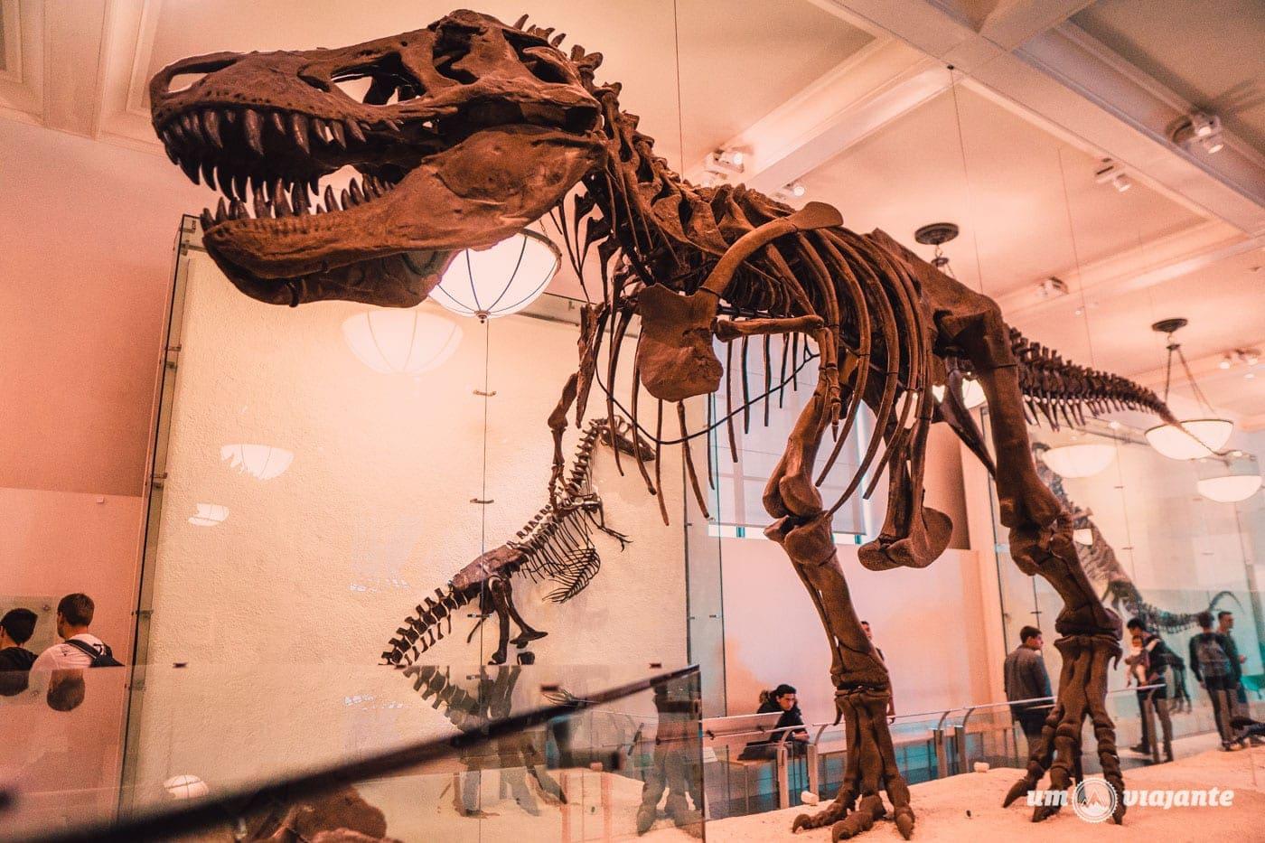 Dinossauros do Museu de História Natural - Nova York