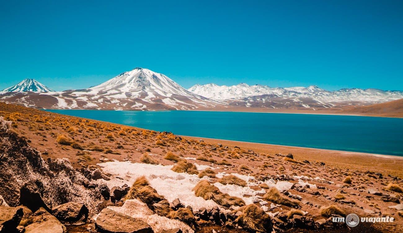 Setembro no Atacama - Lagunas Altiplânicas, Chile