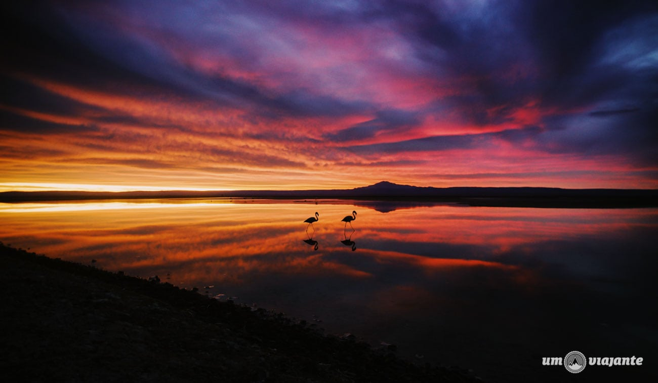 Pôr do sol no Salar de Atacama   Foto: Robson Franzói @blogumviajante