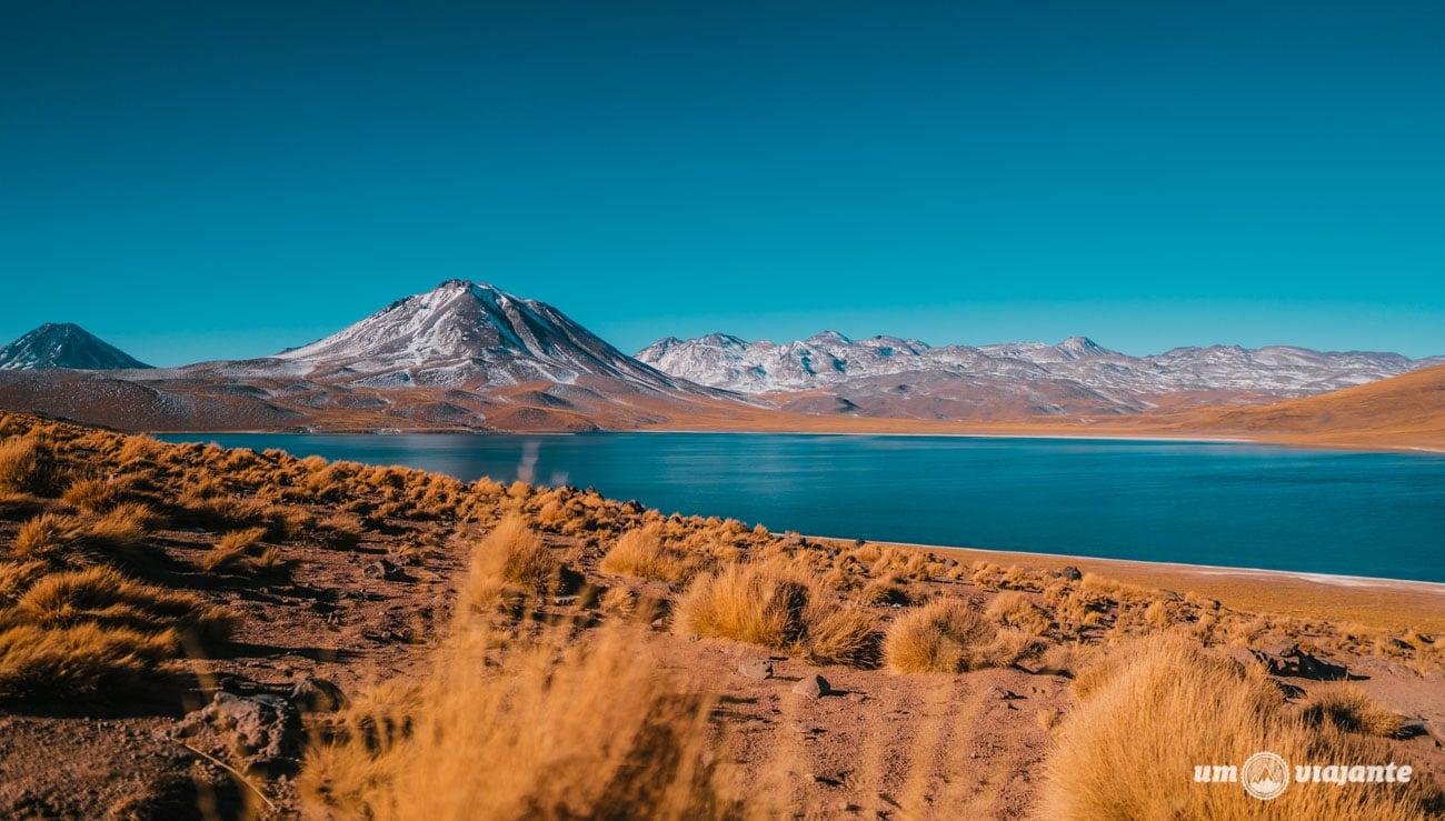 Laguna Miscanti, Deserto do Atacama   Foto: Robson Franzói @blogumviajante