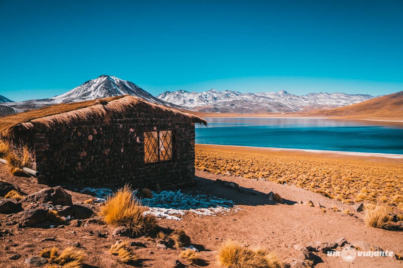 Lagunas Altiplânicas, Deserto do Atacama   Foto: Robson Franzói @blogumviajante