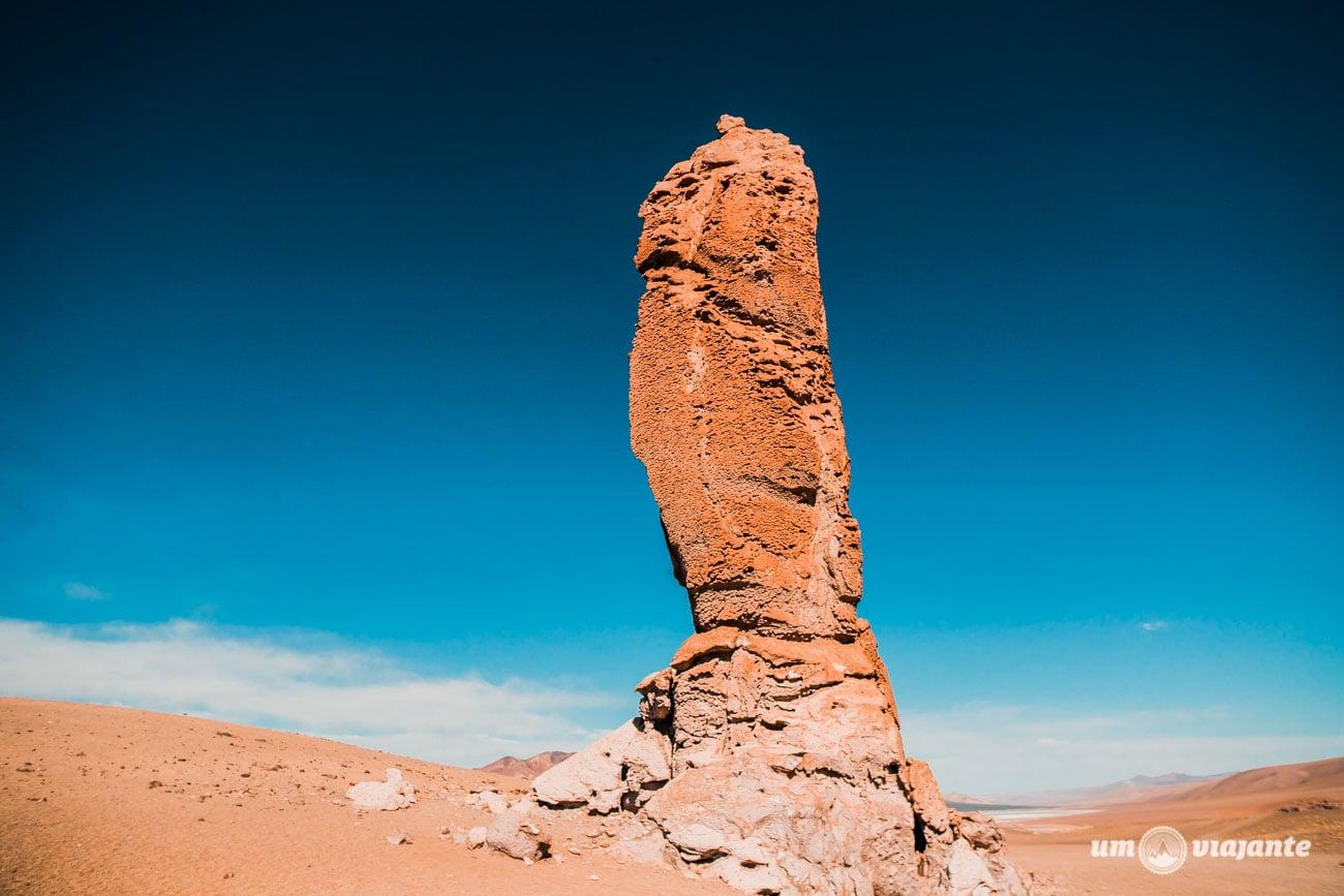 Salar de Tara, no Deserto do Atacama   Foto: Robson Franzói @blogumviajante