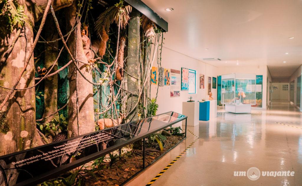 Vale a pena visitar o Ecomuseu de Itaipu